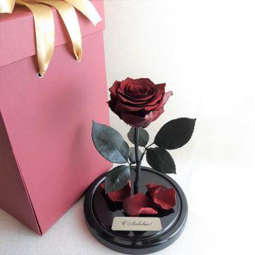 Розы М с коробкой и гравировкой,       10 оттенков