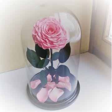 """Роза в колбе VIP """"Pink"""""""