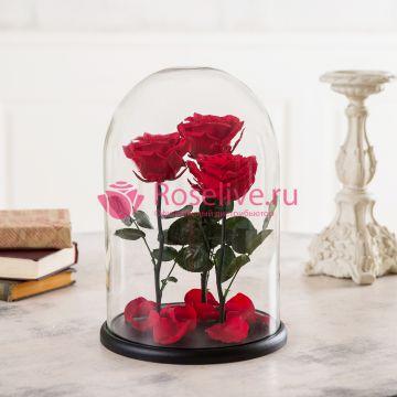 """Красные розы в колбе """"ТРИО"""""""