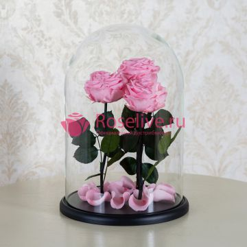 """Розовые розы в колбе """"ТРИО"""""""