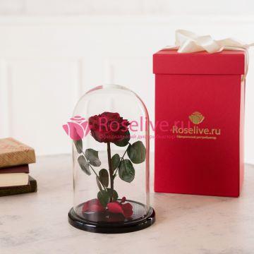 """Розы """"М"""" с коробкой"""