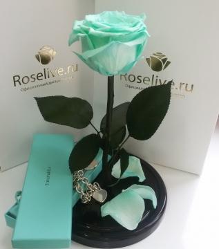 """Роза в колбе """"Tiffany"""""""